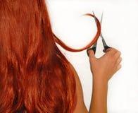 剪切头发 库存图片