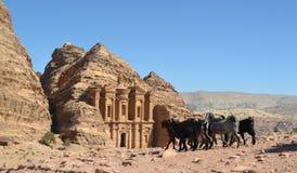 剪切开掘的小山钻孔乔丹做的petra岩石寺庙 库存照片
