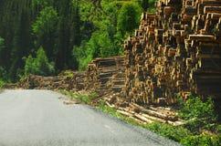 剪切木头 免版税库存图片