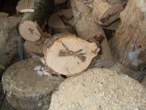 剪切木头 图库摄影