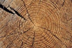 剪切被风化的木 免版税库存照片