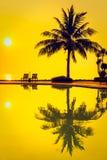 剪影与游泳池的可可椰子树 免版税库存图片