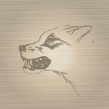 剪影咆哮狼的枪口 免版税库存图片