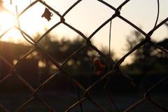 剪影在日落的金属篱芭 免版税库存图片