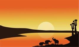 剪影大象家庭  免版税库存照片