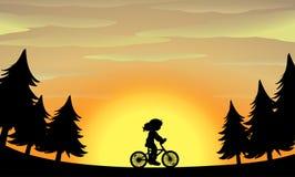 剪影女孩骑马自行车在公园 库存照片