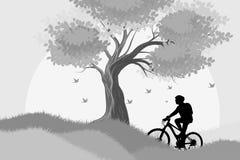 剪影妇女乘驾自行车场面 免版税图库摄影