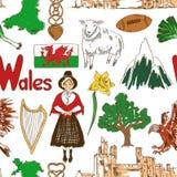 剪影威尔士无缝的样式 免版税库存图片