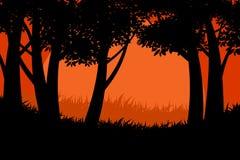 剪影树森林场面传染媒介 免版税库存照片