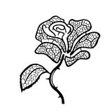 剪影玫瑰色样式 库存照片