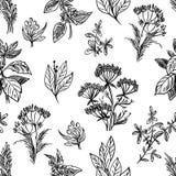 剪影草本和花无缝的样式 向量例证