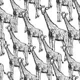 剪影长颈鹿,传染媒介葡萄酒无缝的样式 免版税库存图片