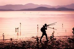 剪影,摄影师在美洲红树的深泥走 泰国 免版税库存图片