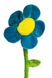 剪报简单雏菊的轻拍 库存照片