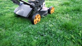 剪绿草的割草机在后院 股票视频