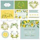 剪贴薄设计元素 婚礼夏天花集合 柠檬标记 免版税图库摄影