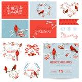 剪贴薄设计元素-葡萄酒圣诞节鸟和莓果题材