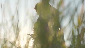 割与大镰刀的逗人喜爱的肥满妇女草在绿色夏天领域 民间传说,传统 在领域的工作 股票视频