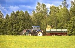 割晒牧草在夏天,拖拉机,工作的人们,立陶宛 库存照片