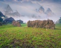 割晒牧草在山村 库存图片