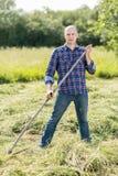 割晒牧草的人 图库摄影