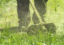 割绿色野草领域的人使用灌木清除机刈草机或电动工具串草坪整理者 库存图片
