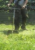 割绿色野草领域的人使用灌木清除机刈草机或电动工具串草坪整理者 免版税图库摄影