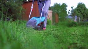 割草坪的女孩 股票录像
