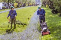 割草坪的工作者 免版税库存照片