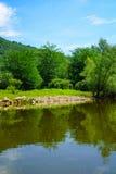 力耶卡Crnojevica, Skadar湖 免版税库存照片