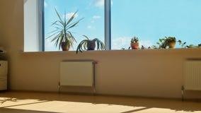 从办公室窗口的看法在天空 免版税图库摄影