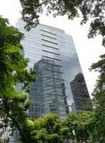 办公楼在有自然地绿色环境的一个城市 免版税库存照片
