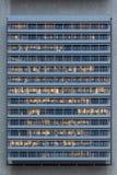 办公楼的外面播种的看法 免版税图库摄影