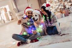 加上在新年` s伊芙的狗 库存图片