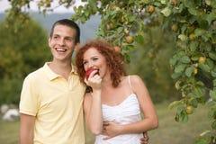 加上果子 免版税图库摄影