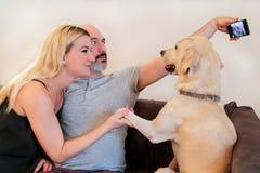 加上狗在家 免版税库存照片