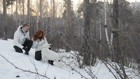 加上狗在白色森林里 影视素材
