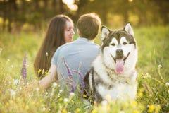 加上狗 免版税图库摄影