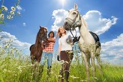 年轻加上走在用花装饰的草甸的马 免版税库存照片