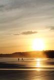 加上风景剪影走在五颜六色的日出夏天天空的沙滩的狗与反射 免版税图库摄影
