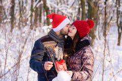 加上bengals和礼物在冬天森林里 库存照片