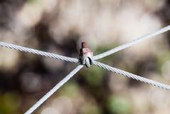 加入四根导线的生锈的螺丝 免版税库存图片