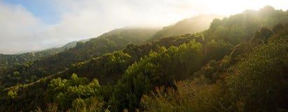 加利福尼亚中央全景 免版税图库摄影