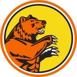 加利福尼亚北美灰熊减速火箭边的圈子 向量例证