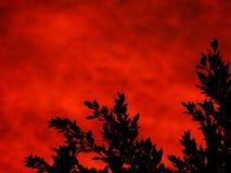 加利福尼亚南部的日落 库存图片