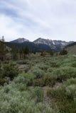 加利福尼亚国家公园优胜美地 库存图片