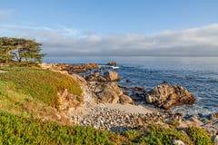加利福尼亚大Sur海岸 免版税库存图片