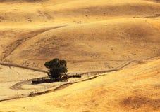 加利福尼亚小山路农村虚拟扭转 免版税库存照片