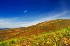加利福尼亚小山 库存照片