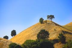 加利福尼亚州的大草原 免版税图库摄影